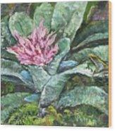 Poison Dart Frog On Bromeliad Wood Print