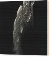 Poisson Volant Wood Print