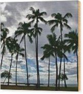 Poka'i Bay, Waianae, Hawaii  Wood Print