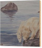 Polar Bear Fishing Wood Print