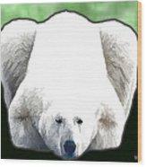 Polar Bear - Green Wood Print