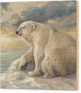 Polar Bear Rests On The Ice - Arctic Alaska Wood Print