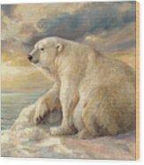 Polar Bear Rests On The Ice - Arctic Alaska Wood Print