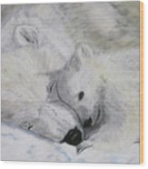 Polar Bears Wood Print