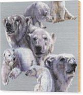 Arctic King Wood Print