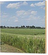 Polder Near Reeuwijk-1 Wood Print