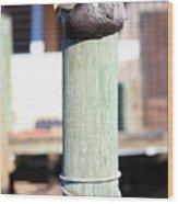 Pole Top Pelican Wood Print