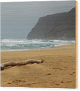 Polihale State Park Wood Print