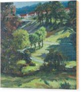 Polin Springs Wood Print