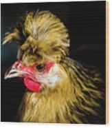Polish Hen Wood Print