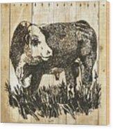 Polled Hereford Bull 11 Wood Print