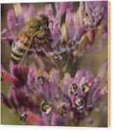 Pollen Bees Wood Print