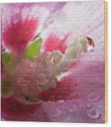 Pollen Droplet Wood Print
