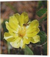 Pollinate Wood Print