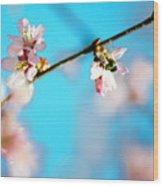 Pollination 1.03 Wood Print