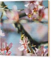 Pollination 1.06 Wood Print