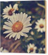Pollination Love  Wood Print