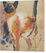 Pollock's Cat Wood Print