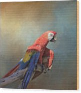 Polly Want A Cracker Wood Print
