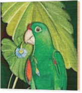 Polly Wants A Flower Wood Print