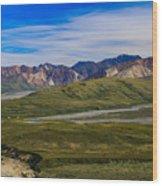 Polychrome Pass Area Denali National Park Four Wood Print