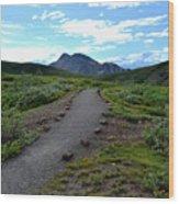 Polychrome Pass Trail, Denali Wood Print