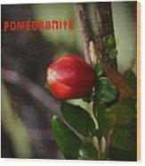 Pomegranite Art II Wood Print