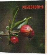 Pomegranite Art Wood Print