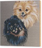 Pomeranian Pair Wood Print