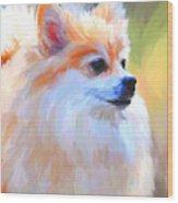 Pomeranian Portrait Wood Print
