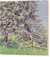 Pommiers Fleuris Wood Print