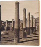 Pompeii, Excavation Wood Print