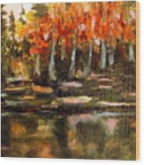 Pond 1 Wood Print