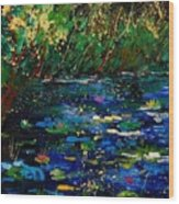 Pond 459030 Wood Print