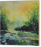Pond 459060 Wood Print