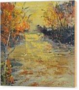 Pond  556180 Wood Print