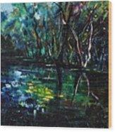 Pond 944 Wood Print