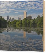 Pond And The Chicago Skyline Wood Print