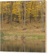 Pond And Woods Autumn 1 Wood Print