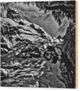 Pond At Great Falls #4 Wood Print