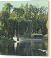 Pond At Mae Stecker Park In Shelby Township Mi  Wood Print
