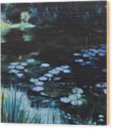Pond At Port Meirion Wood Print