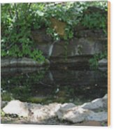 Pond At Twu 2 Wood Print