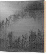 Pond By Moonlight Wood Print by John Krakora