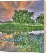 Pond Dreams 4 Wood Print