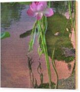 Pond Dreams10 Wood Print
