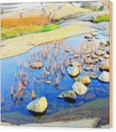 Do You Know The Secret Of The Pond Wood Print