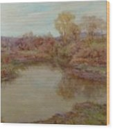Pond In Early Autumn Wood Print