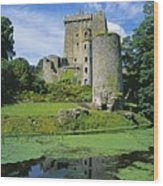 Pond In Front Of A Castle, Blarney Wood Print