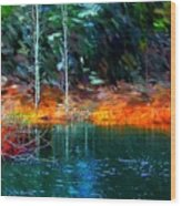 Pond In The Woods Wood Print